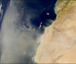 Sahara desert blowing sand at the Joey Barton Twitter meltdowns