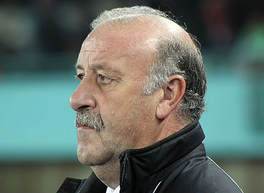 Vicente del Bosque was clattered by a linesman during Italy 1-1 Spain