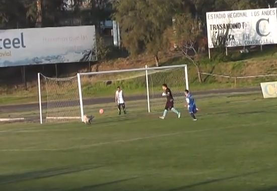 Dog makes save in Chilean match