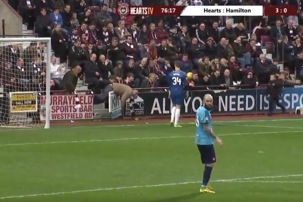 Hearts fan falls over advertising hoardings at Tynecastle during 4-0 win over Hamilton