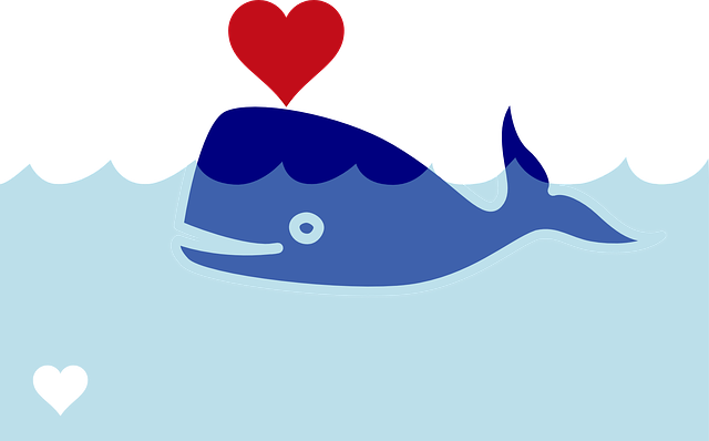 Whale, not Wales