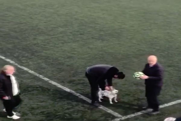 Dog takes ball and is chased by players in youth game in Turkey