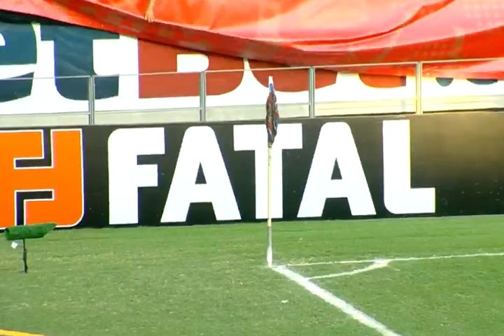 Swarm of bees on corner flag at Fortaleza before their match with Internacional