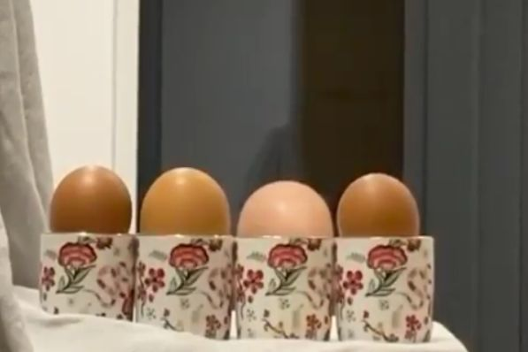 Aston Villa goalkeeper Pepe Reina pretends to be an egg with his head in an egg cup