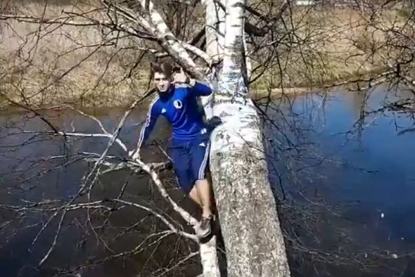 Man falls in water after attempting trick while balancing on tree