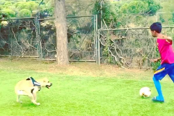 Barcelona youth player Shane Kluivert playing football with his dog